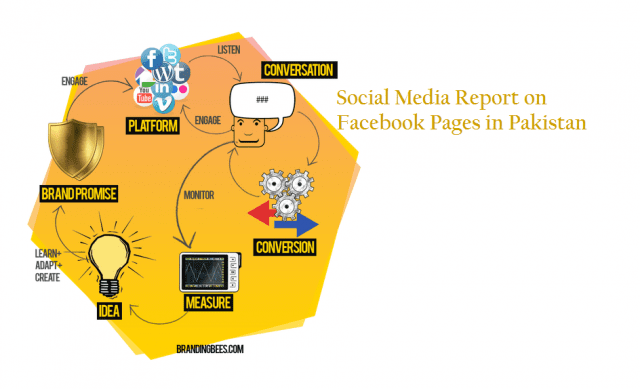 Report on Facebook Pages in Pakistan 2012