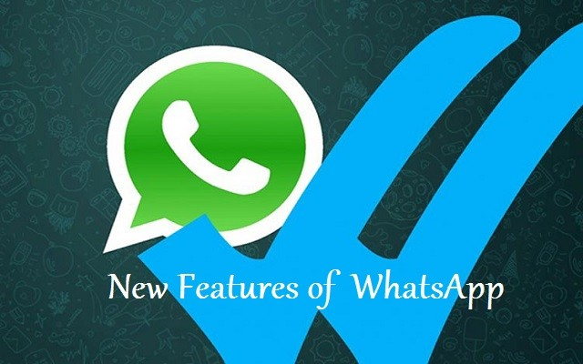 WhatsApp Introduces
