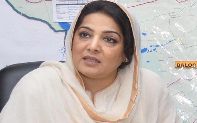 Pakistan is Going to Establish a State of the Art Technology Park, Anusha
