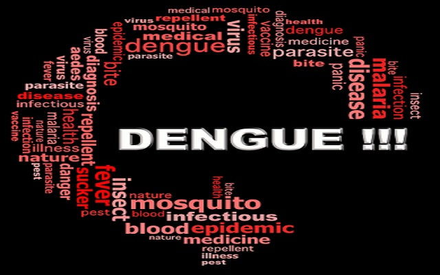 Telenor Uses Large Mobile Data to Fight Dengue in Pakistan