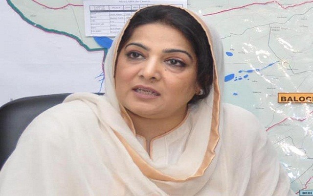 Chinese Delegation Calls on Anusha Rehman- To Invest in IT Parks & E-Stores