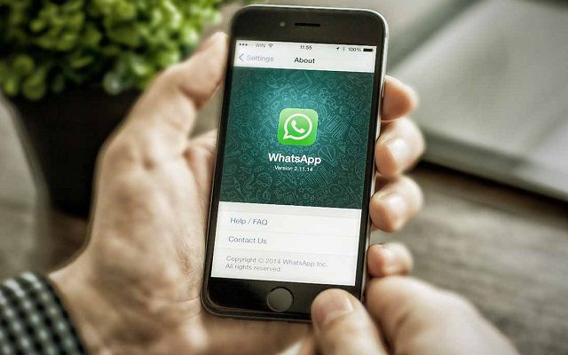 WhatsApp to Roll Out GIF Feature