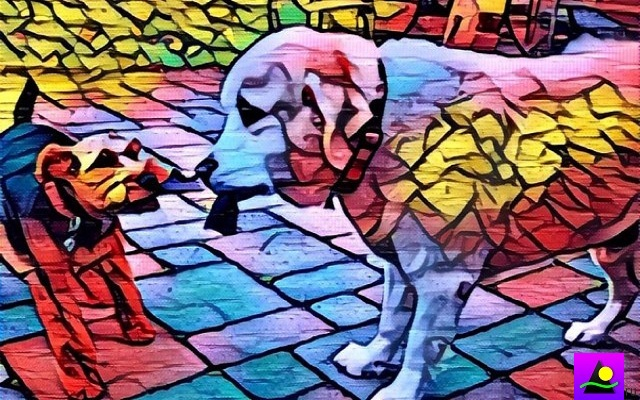 Artisto- A Video Editing App Uses Neural Network Similar to Prisma