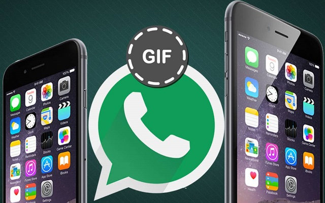 Whatsapp Adds GIF Support for Android Users