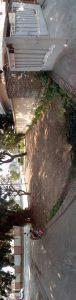 qmobile king kong max back camera result