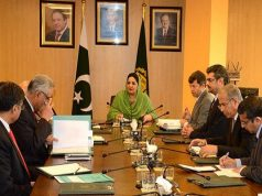 4G Auction to be Completed Before June, 2017: Anusha Rehman