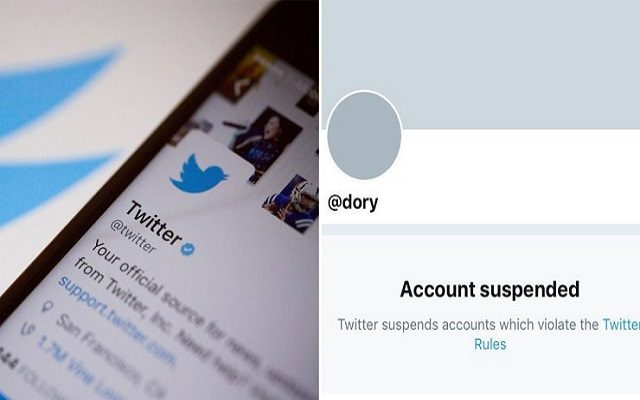 Twitter Repordly Suspends a Ton of Accounts