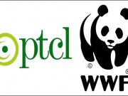 PTCL & WWF-Pakistan Conducts Spellathon in Less-Privileged Schools