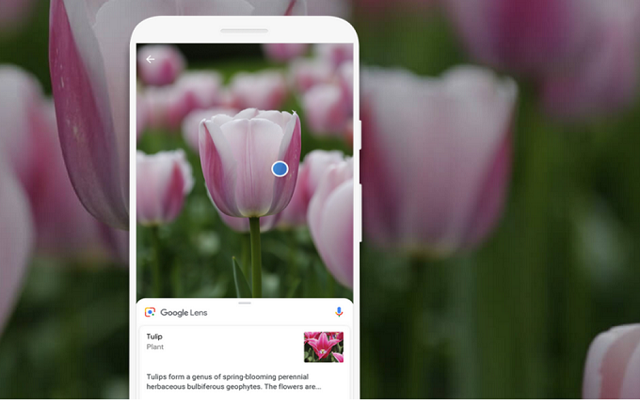 Google Introduces the Lens Visual Search Feature for iOS