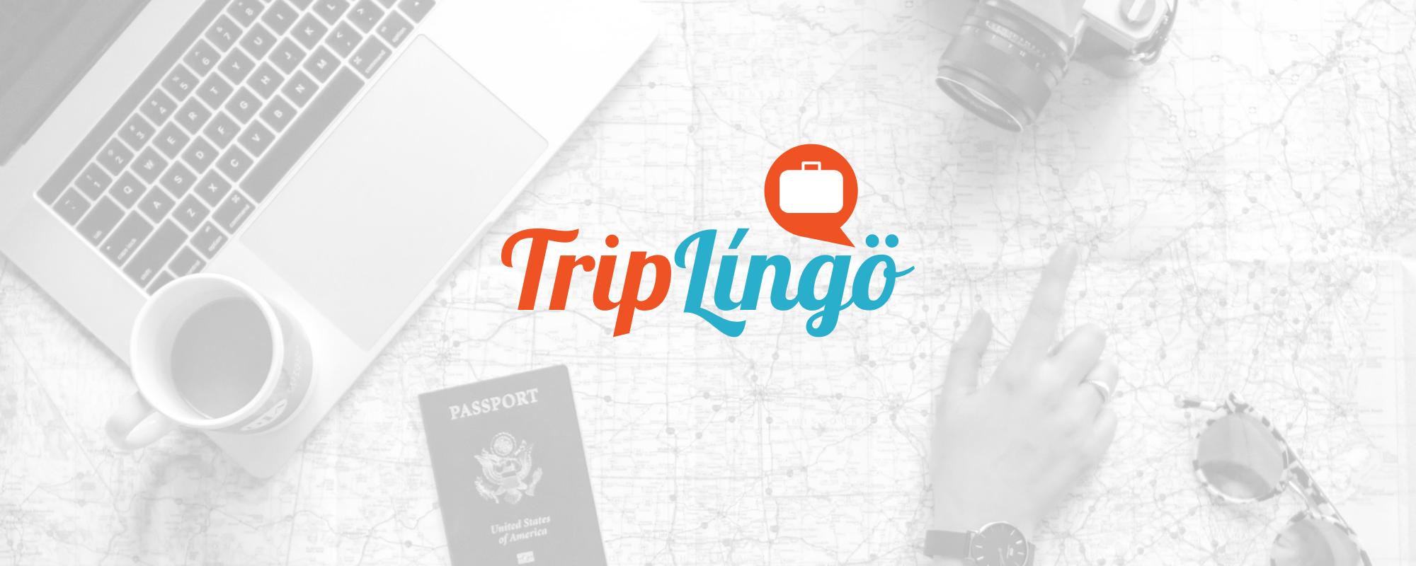 best french english translation app