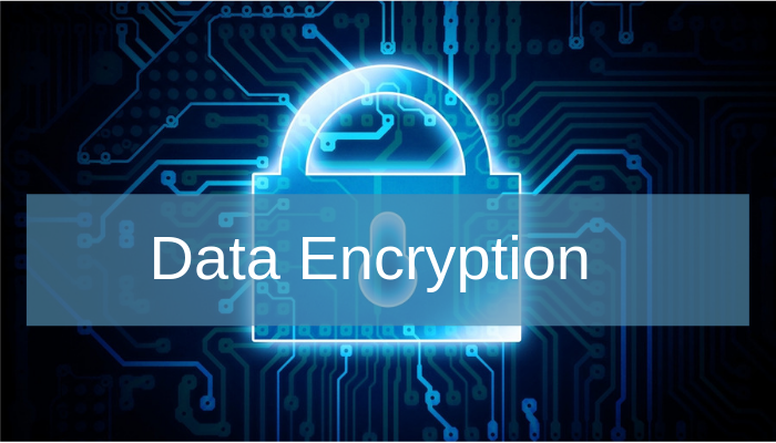 Data Encryption- A Detailed Insight Is it Enough Security for the People?