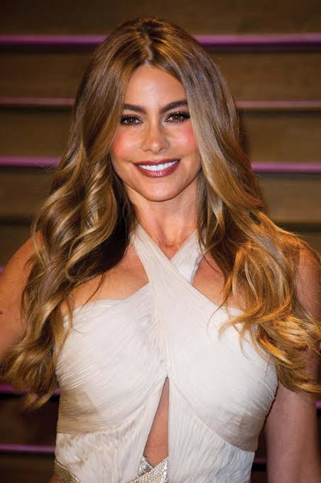 sofia vergara highest paid tv actor