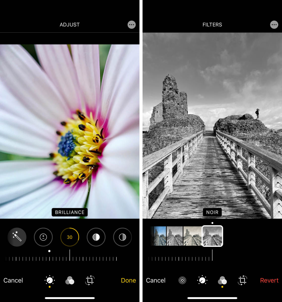 Smart Phone Camera Tricks-Capture Amazing Photos From Your Phone