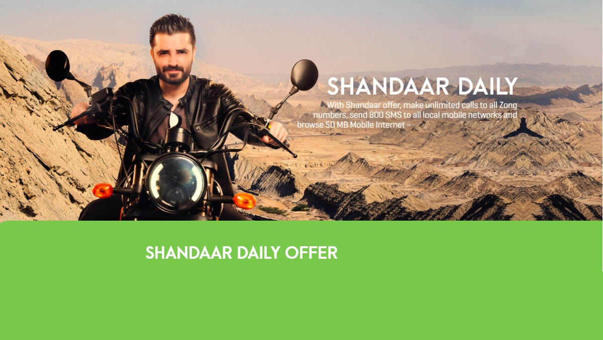 Zong Shandaar Daily Offer