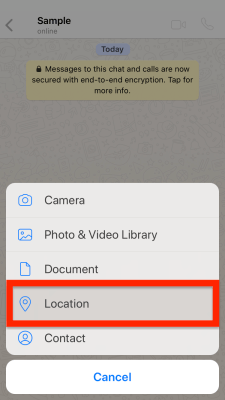 send fake GPS