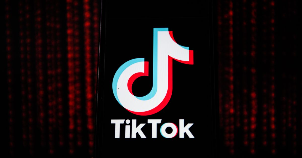 TikTok Safety Update Allows Parents to Control their children