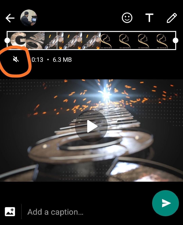 Videos Mute