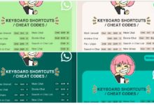 WhatsApp Cheat Codes