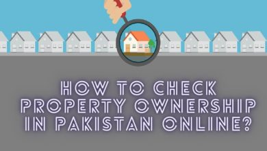 How to Check Property Ownership in Pakistan Online?