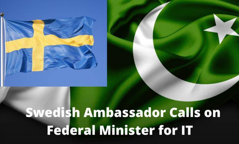Ambassador of Sweden Calls on Federal Minister for IT