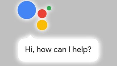 Guess how Many Times Google Assistant's Android Version is Installed?