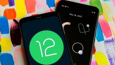 How to install Android 12 public beta on Phone?